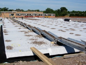 100m rooftop application